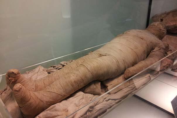 Életre kelnek a múmiák?